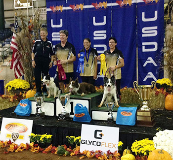 2015 Keen 3rd Place Performance Grand Prix Finals